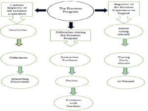 Figure 1. Themes and Categories of Qualitative Data Analysis